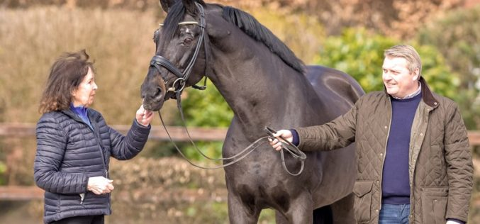 Top sire Rubin Royal OLD celebrates its 25th birthday