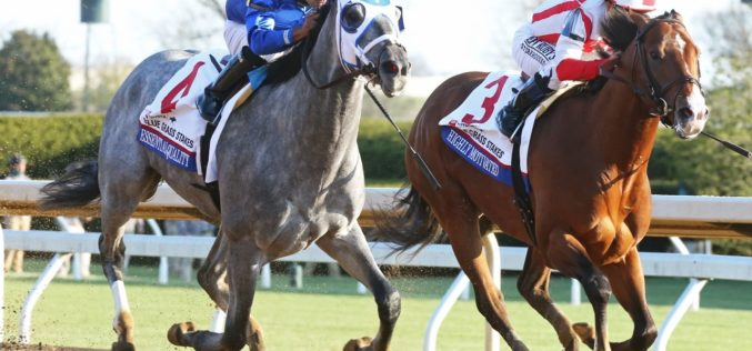 «Essential Quality» favorito para vencer o Derby de Kentucky