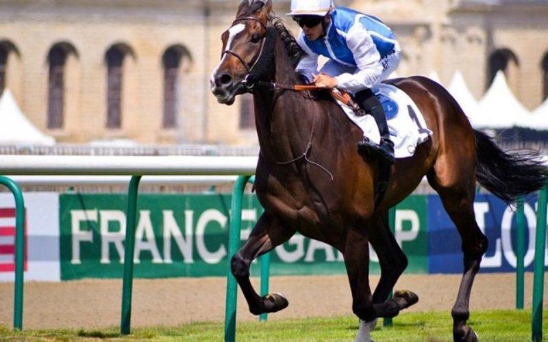 Qatar Prix du Jockey Club, um evento imperdível do Galope