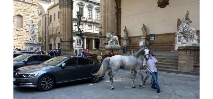 Cavalo farto de puxar carruagem turística … (VÍDEO)