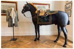 Visita exclusiva aos bastidores da Escola Portuguesa de Arte Equestre