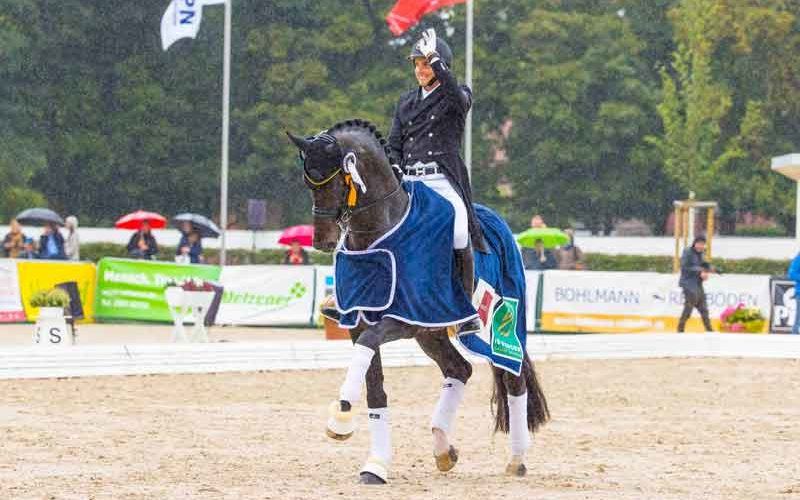 Dutch and Danish stallions steal the show