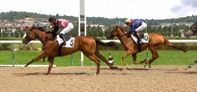 "«Hot Spot (IRE)» vence uma ""Quinte +"" em Deauville! (VÍDEO)"