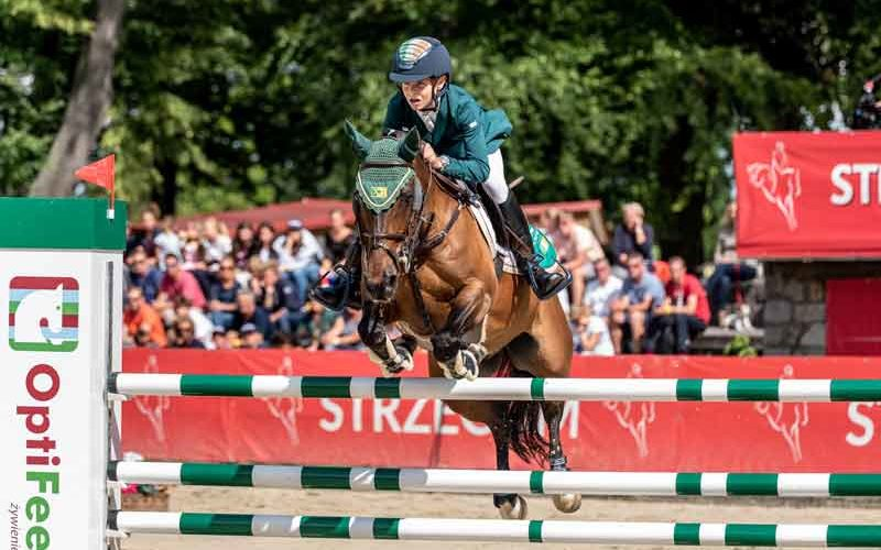 Time for ponies! The European Championships are about to start in Strzegom