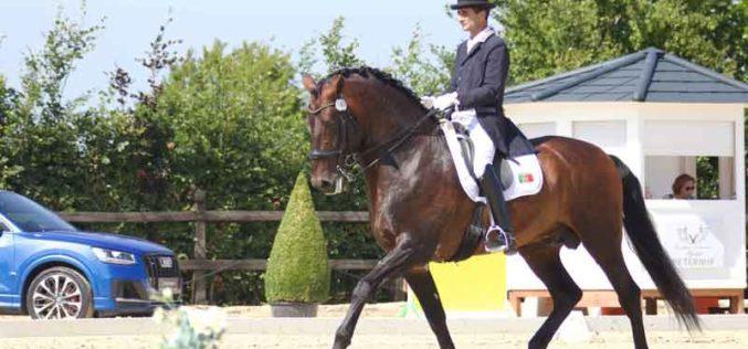 Campeonato da Europa de Dressage 2021: 7 Cavalos Lusitanos inscritos