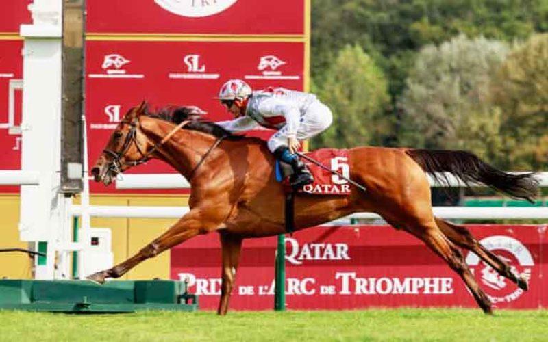 «Teona» alcança vitória inesperada em Longchamp (VÍDEO)