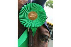 Critério de Cavalos Novos de Saltos de Obstáculos – Alteração de datas…