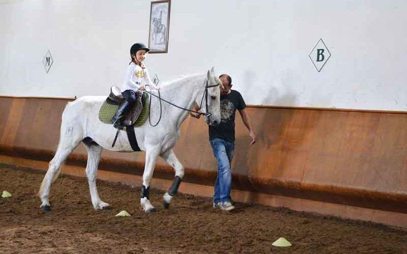 Câmara de Azambuja vai financiar aulas de equitação