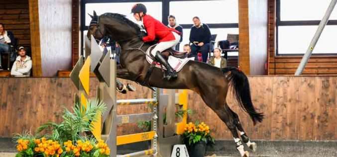 Urh Bauman perde 2 cavalos em acidente fatal