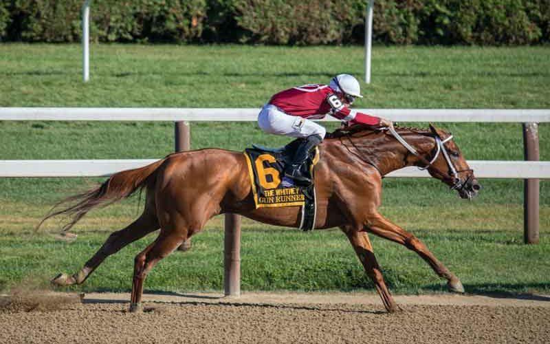 Apostas Desportivas, Mais um Fator para o Futuro das Corridas de Cavalos